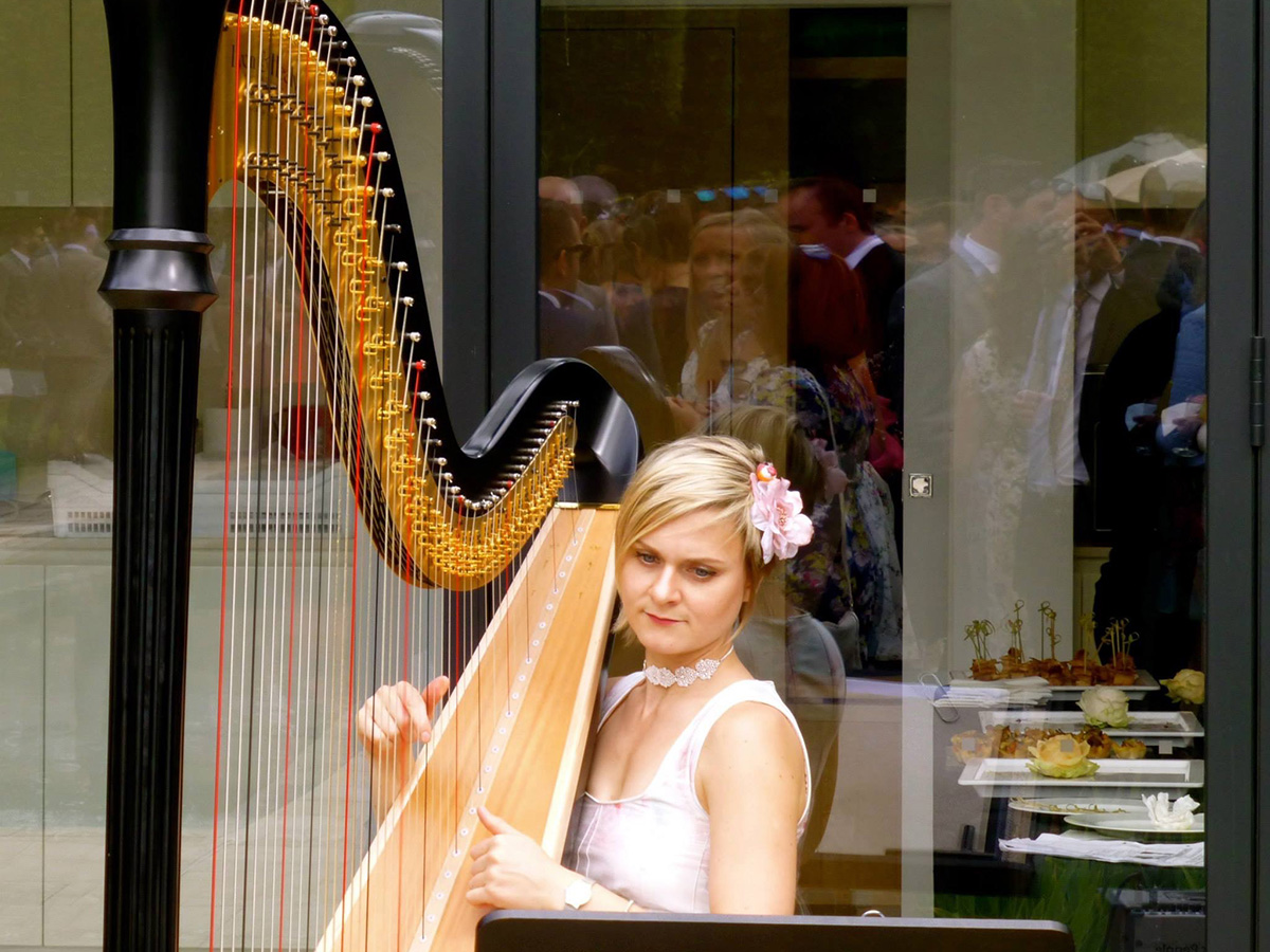 harpist drinks reception