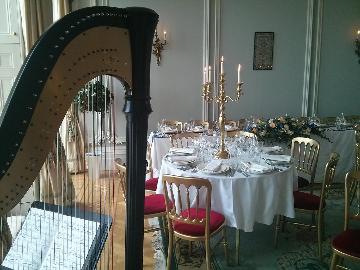 harpist at a wedding breakfast